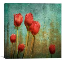 textured tulips, Canvas Print