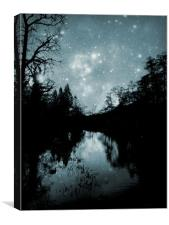 lake in the starlight, Canvas Print