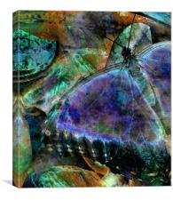 butterfly on fruit - abstract, Canvas Print