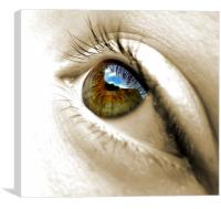 in a child's eye (reflections), Canvas Print