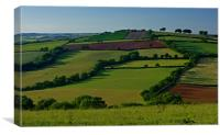 Fields and Hedgerows, Canvas Print