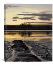 The Exe Estuary near Topsham, Canvas Print