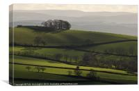 Hills and fields, Canvas Print