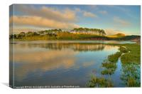 Otter Estuary at Budleigh, Canvas Print
