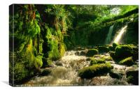 Waterfall on Vennford Brook, Canvas Print