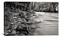 River Barle Exmoor, Canvas Print