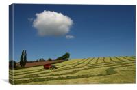 Silage collection, Canvas Print
