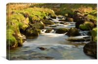 West Okement River, Canvas Print