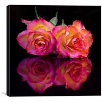 Reflected Roses, Canvas Print