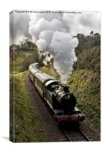 Kingswear to Paignton Train, Canvas Print