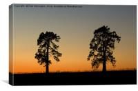 Two trees at sunset, Canvas Print