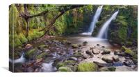 Vennford Waterfall on Dartmoor, Canvas Print