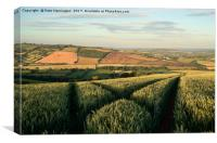 The Exe Valley, Canvas Print