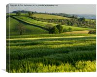 Mid Devon farm land, Canvas Print