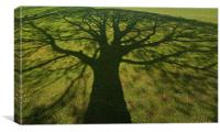 Shadow tree, Canvas Print