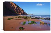 Sidmouth West Beach, Canvas Print