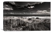 From The Dunes, Canvas Print