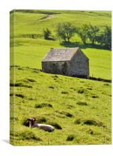 Lazy Day In The Peak District, Canvas Print