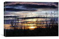 Sunset & Silhouettes, Canvas Print