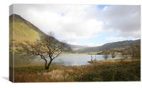 Cregennen Lake, Snowdonia, Canvas Print
