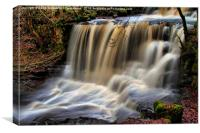 DALESCAPES: Crackpot Foss, Canvas Print