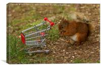 Shopping For Nuts!, Canvas Print