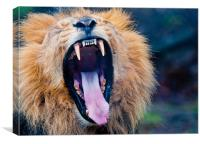 Roar, Canvas Print