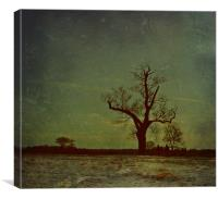 Winter Sillouette.., Canvas Print