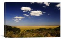 Serengeti's View, Canvas Print