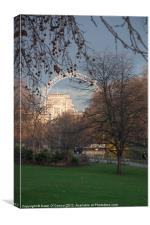 St. James's Park and the London Eye, Canvas Print