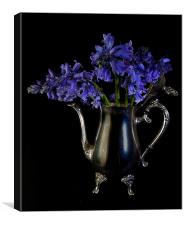 Bluebells in Silver, Canvas Print