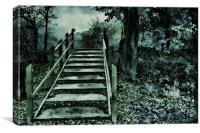 Gothic Forest, Canvas Print