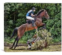Cross country horse riding, Canvas Print