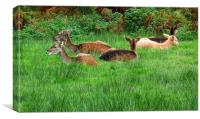Deer To My Heart!, Canvas Print