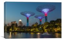 Marina Bay Park, Canvas Print