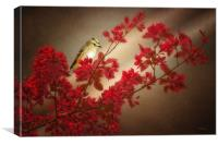 GOLD CREST ON A TREE BRANCH, Canvas Print