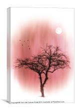 A TREE IN PINK, Canvas Print