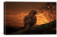 WAITING FOR PREY, Canvas Print
