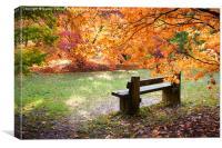 Autumn Bench, Canvas Print