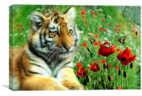 Tiger Butterflies, Canvas Print
