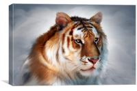 Godly Tiger, Canvas Print