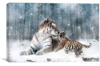 Kaiser Katrina and the Kiss Tiger Canvas Print, Canvas Print