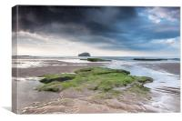 Bass Rock from Seacliff, Canvas Print