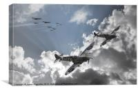 Escort Sqdn, Canvas Print