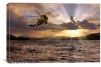 Sea King, Canvas Print