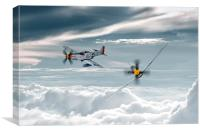 P51 Mustang - Old Crow, Canvas Print