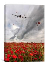 Poppies Dropped , Canvas Print