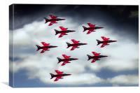 9 Ship Gnats, Canvas Print