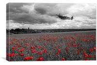 Spitfire Red , Canvas Print