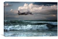 Sea Harriers , Canvas Print